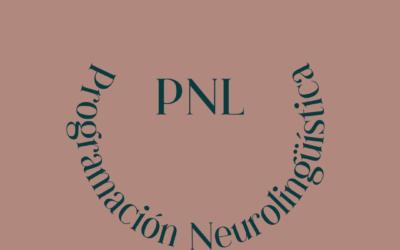Principios básicos de la Programación Neurolingüística o PNL